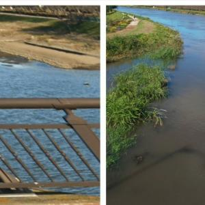 川の増水。