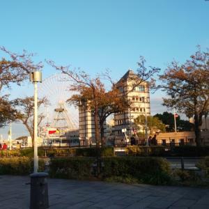 横浜旅行 ③ 【みなとみらい散策】