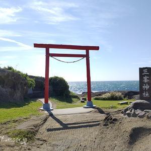鰻と野島崎灯台