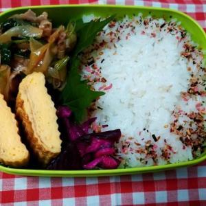 ネギと豚肉の炒め物弁当