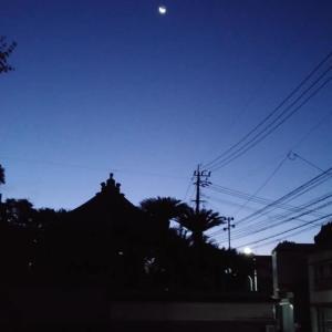 8/16 5:05 散歩スタート