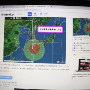 台風被害。 少ない被害で済みました。 其の一。