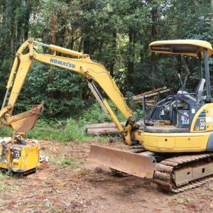 杉の伐採作業 開始 !!
