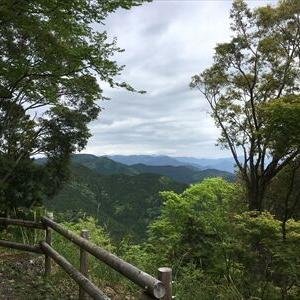 【移動結果】5/9静岡県藤枝市 高根山