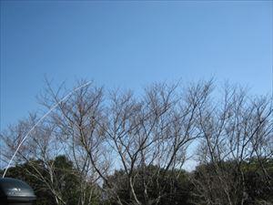 【移動結果】2/2愛知県田原市衣笠山中腹