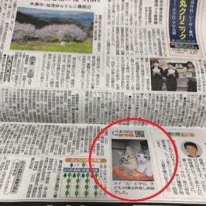 今日の西日本新聞