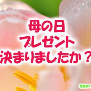 【八王子のおすすめのお花屋さん】