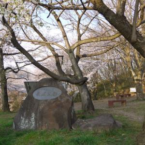 ★八王子の桜★【長沼公園を訪れる】◆八王子八十八景◆