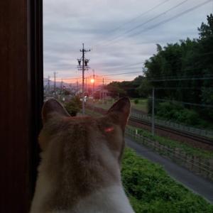 真っ赤っかな太陽