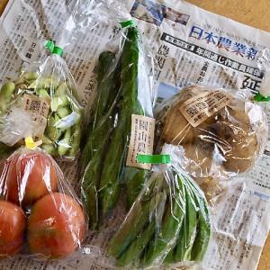 野菜をたくさん食べれるレシピ教えて!