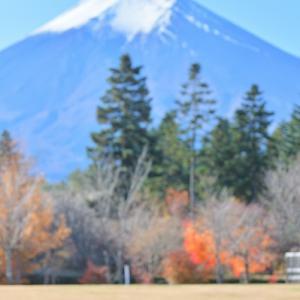 紅葉狩り 山中湖〜富士吉田