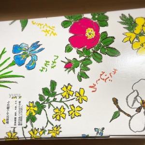 六花亭「10月通販おやつ屋さん」が届きました!!