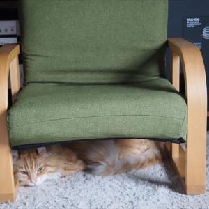 いすの したの、 おれ