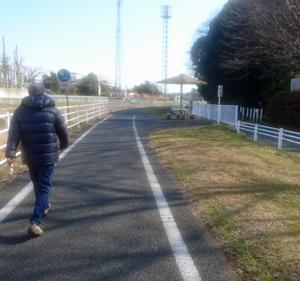 散歩道を発見
