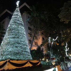 【定点観測】バンコクのクリスマスツリー 2018 (夜景編)