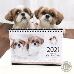 2021年のシーズーカレンダー出たよ~