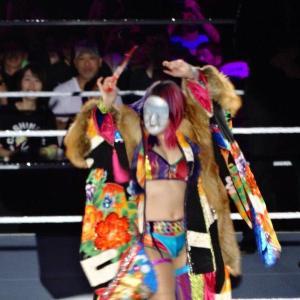 WWE Live Tokyo Day2