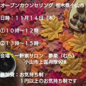 【募集開始】11/11(木)オープンカウンセリング 栃木県小山市