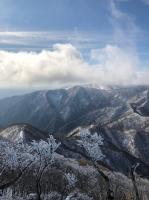 雪の藤原岳