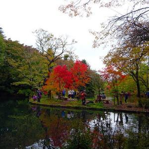 雲場池の紅葉、少しは進んだかな?