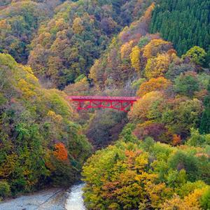 せっかく高山村まで行ったので、紅葉を見に松川渓谷へ