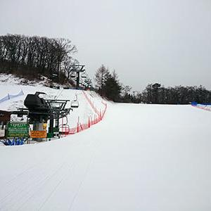 今日は天然雪が滑れた軽井沢プリンスホテルスキー場