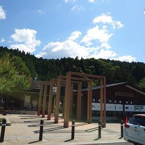 県境越えて、横川サービスエリアの舞茸天そばを頂く