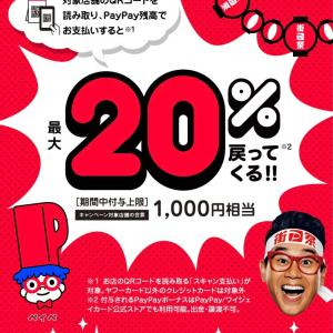 PayPay残高でお支払いすると、最大20%(1000円相当)戻ってくる