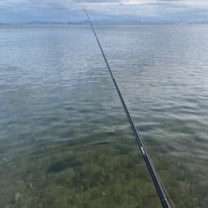 これからの琵琶湖の始まり?
