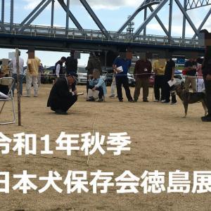令和1年秋季 日本犬保存会徳島展