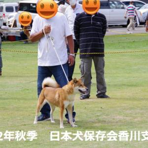 令和2年秋季 日本犬保存会香川支部展