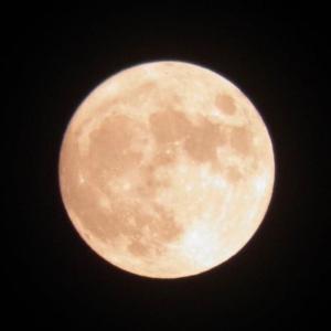 月が綺麗ですね   (文学的に答えよ)