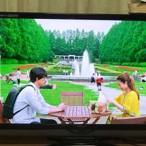 相模原公園がドラマに出ていて「おお!」と思った