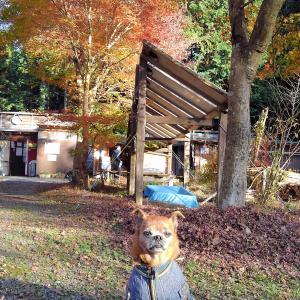 西富士オートキャンプ場に行ったよ!