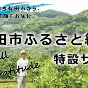 ふるさと納税特設サイト『直接寄附受付開始』お知らせ☆