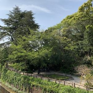 哲学堂公園 ~中野散歩~