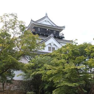 岡崎城、オカザえもん、レースクイーンなど