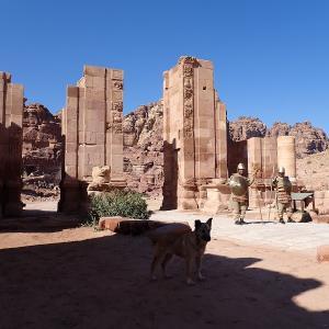 ヨルダン ~ペトラ遺跡とワディラムの旅~ (7)