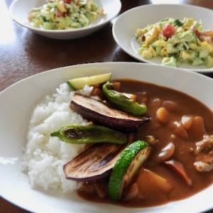 真似てはみたものの・・・ 今日の晩ご飯は、夏野菜のカレー ♡