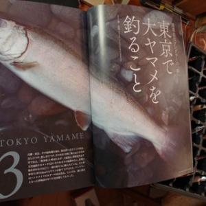 GIJIE 夏秋号発売 多摩川の記事を書かせてきただきました