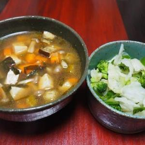 ゴーヤの主張が強い・夏野菜のスープ・酸辣湯味