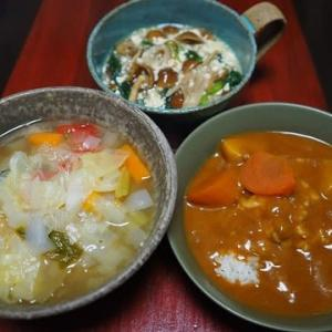 新玉ねぎ甘~い!・デトックススープ風野菜スープ