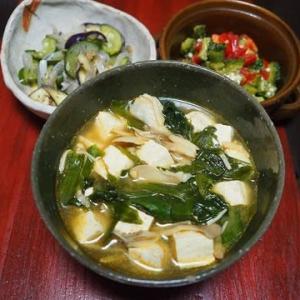 我が家製つるむらさきはなぜか団扇くらいの大きさ・つるむらさきと豆腐の坦々ごまスープ