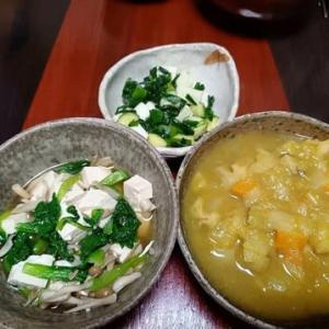 新玉ねぎたっぷりで甘い!・根菜のカレースープ