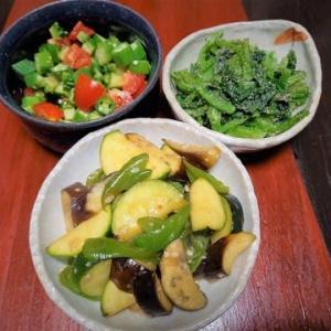 野菜室が夏の野菜でいっぱいになって幸せ・夏の野菜のサラダ