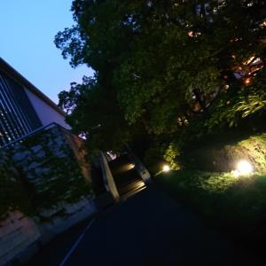 県立美術館  夜のお散歩