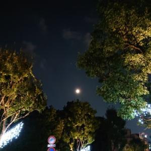 満月ですね(*^^*)  スタージェンムーン