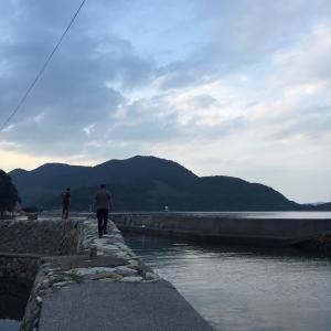 【釣果報告】大島のアジ釣り