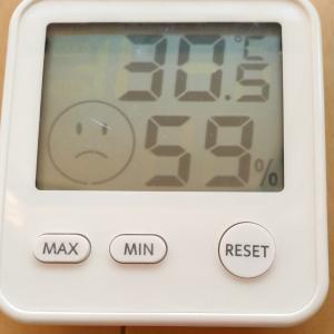 暑すぎる・・・