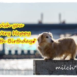 ミルヒ14歳になりました♪